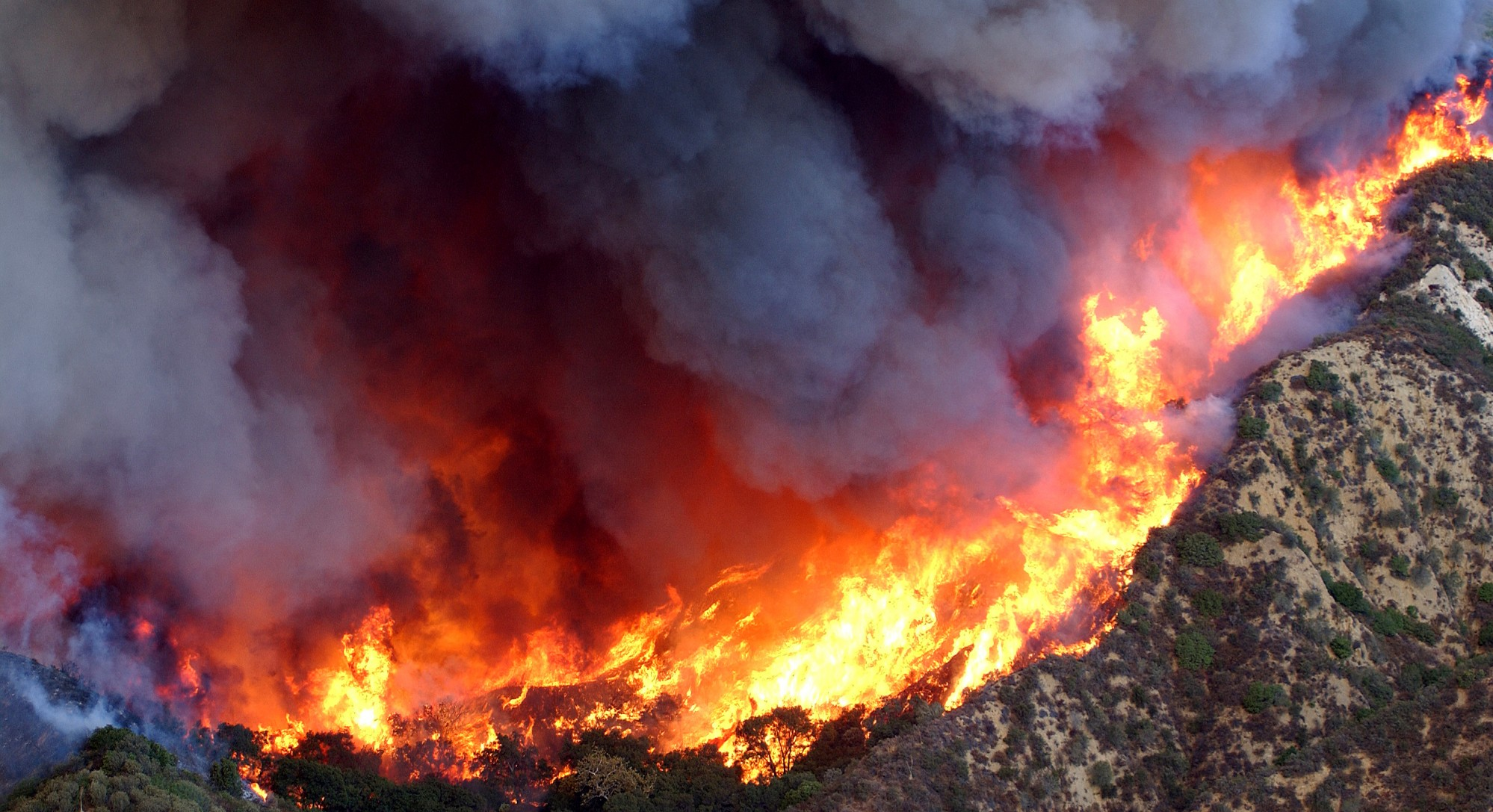 Wildfires and Climate Warming