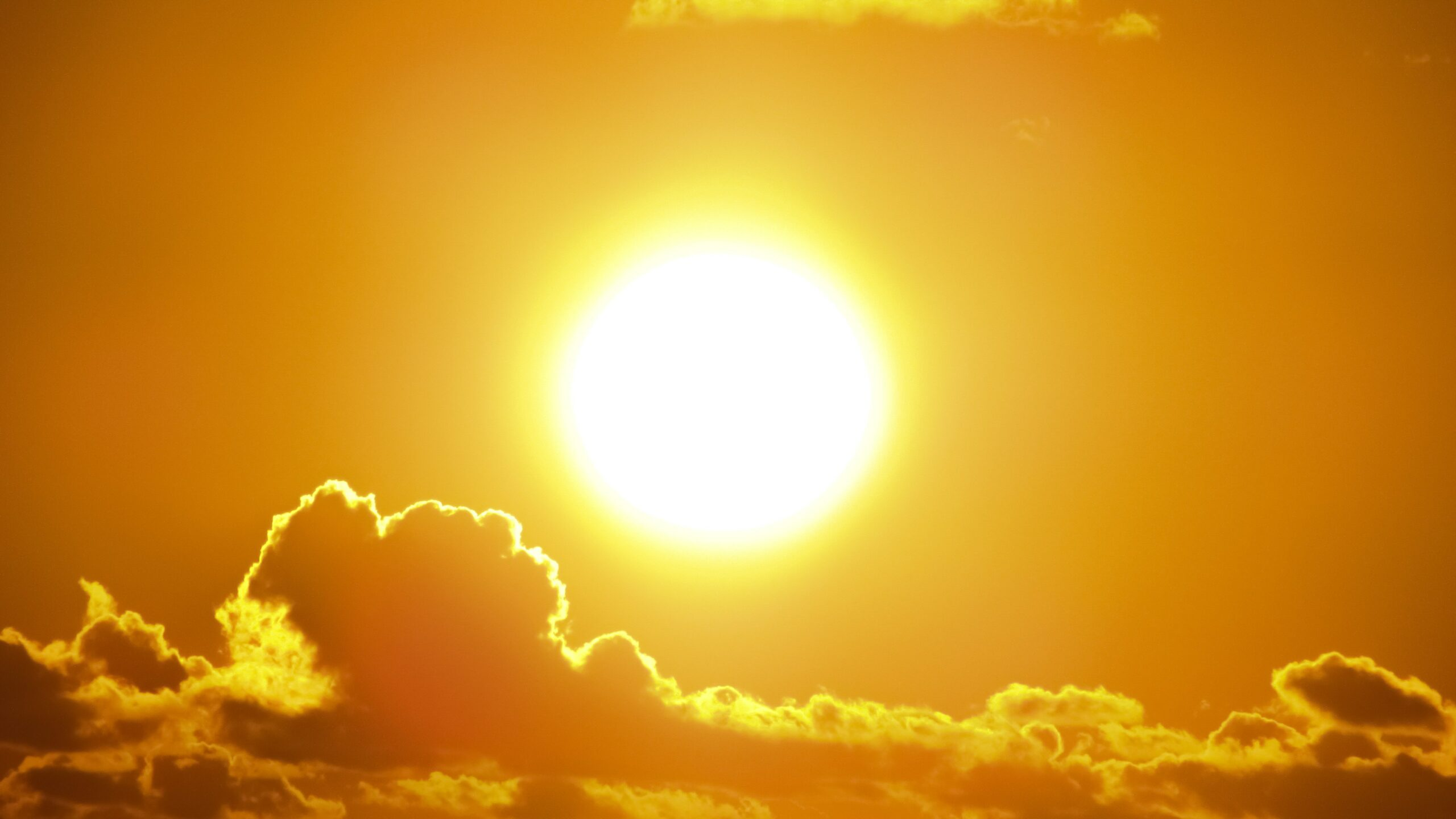 2020 Ties for Global Temperature Record