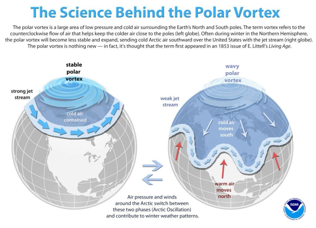 polar vortex oscillations