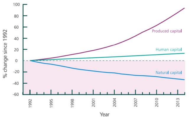 graph showing decline in natural capital