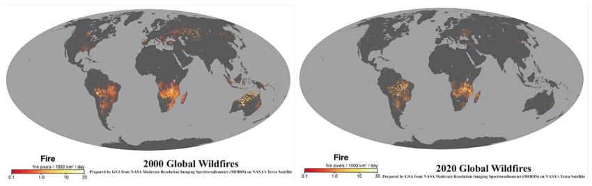 NASA global wildfire maps