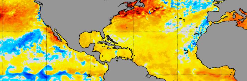 8-14-2021 sea surface temperature anomalies